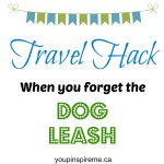 Brilliant travel hack for when you forgot the dog leash!