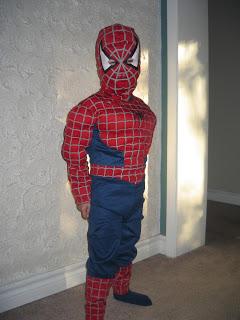 Incredible hulk costume diy you pinspire me nov 004 solutioingenieria Image collections