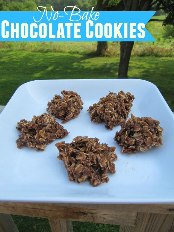 These not-bake chocolate cookies are perfect for an after-school snack! #GayLeaMom