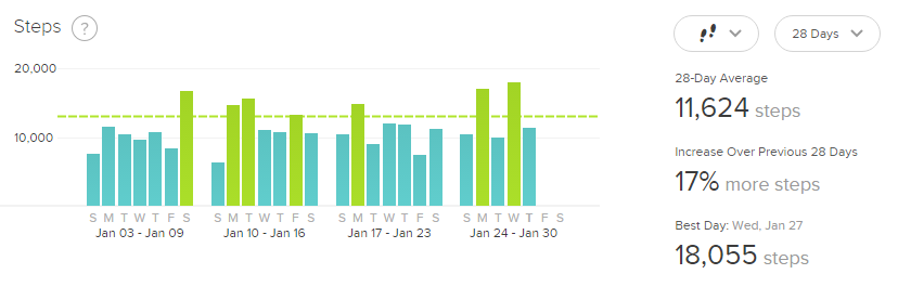 January FitBit Stats