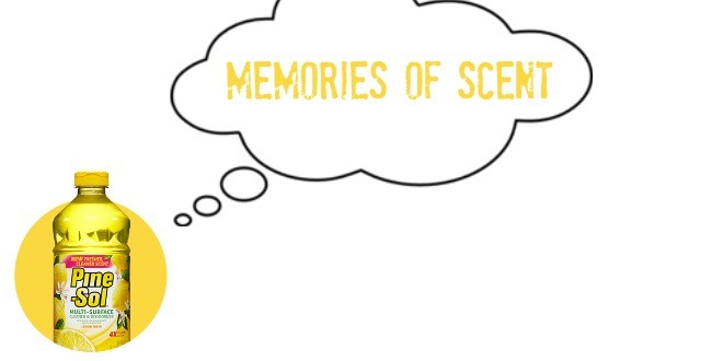 Memory of Scent: How a Hotel Shampoo Brought Me Back to My Awkward Teenage Years #YesItsPineSol